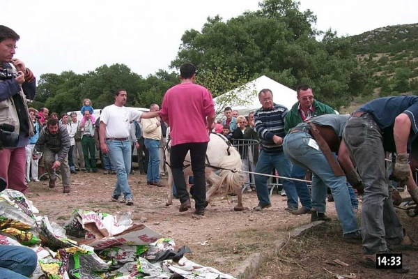 Tatara/bas-fourneau à Fers et Lames en 2000