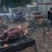 Batterie de cochons à Fers et Lames en 2017